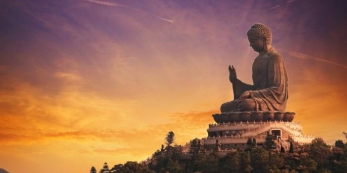 Buda y Su Libertad Financiera