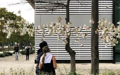 Si brotan billetes de los árboles, es marketing del bueno